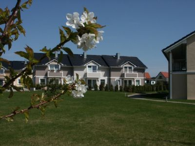 Helle, moderne Wohnung mit großer Terrasse zwischen Ostsee & Achterwasser, WLAN