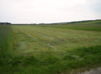 Landwirtschaftliche flächen kaufen hessen